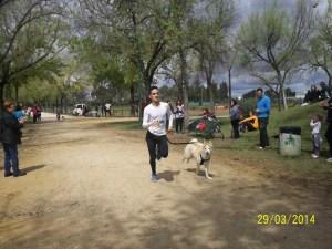 1º Canicros y bike joring Parque Infanta Elena 2014 (18)