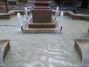Fig. 21 Agua de la fuente. Fuente: Propia.