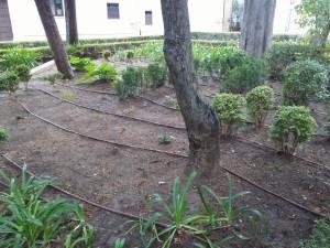 Fig. 26 Zona sin plantación. Fuente: Propia
