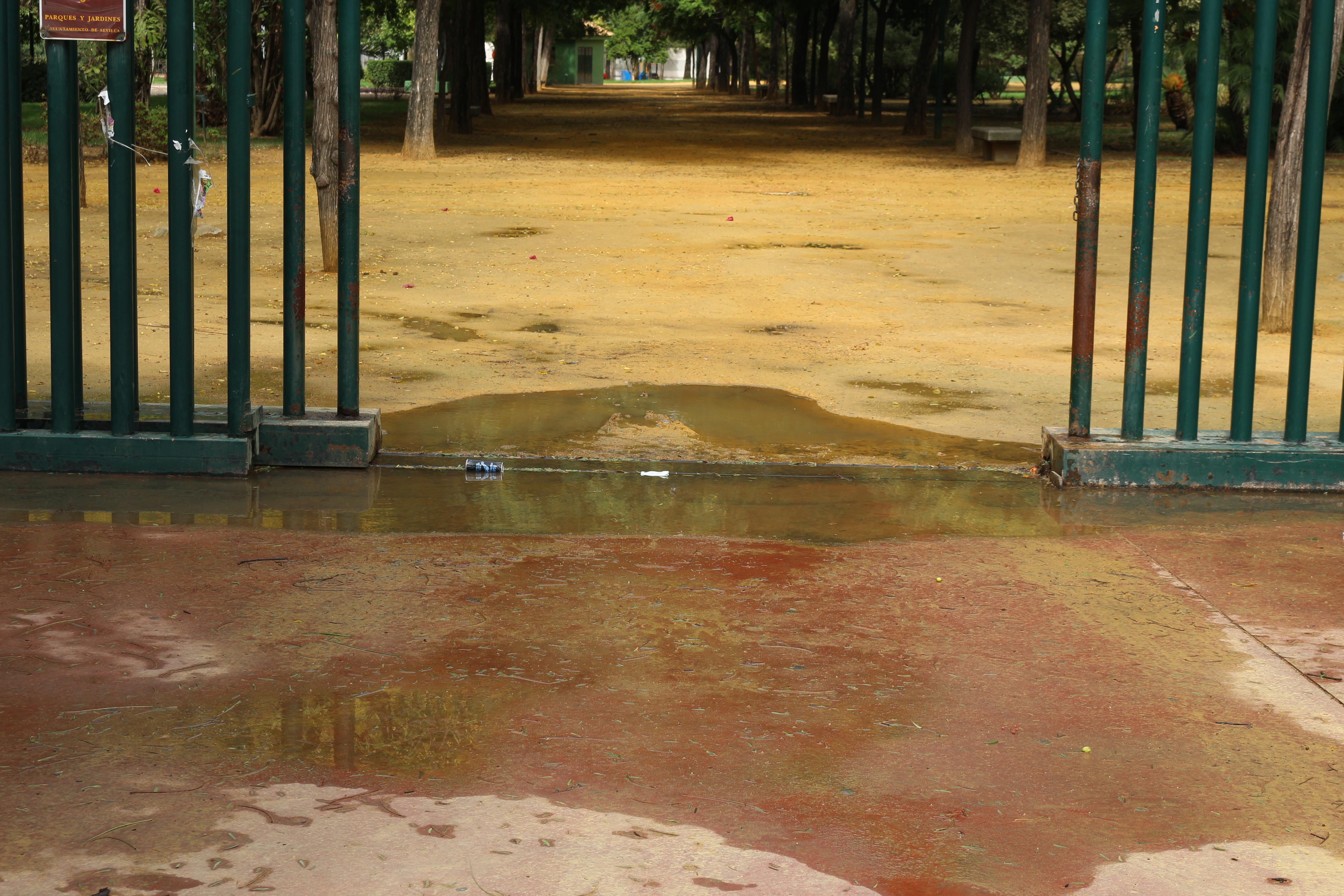 Imagen 5. Entrada sur del parque. Fuente: Elaboración propia.
