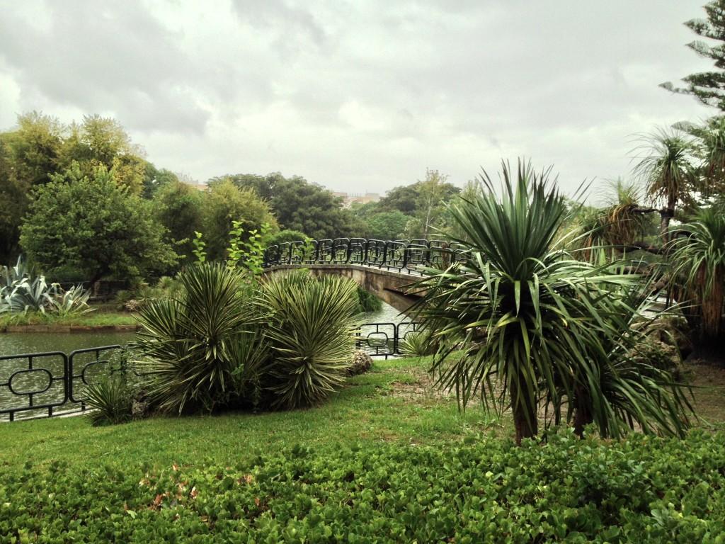 Ilustración 11: Vista del estanque y del puente que conecta ambos extremos de la laguna