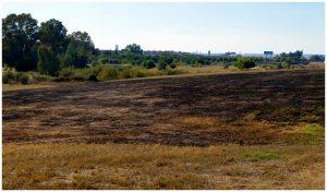 Imagen 36.- Incendio en el parque cerca del aeropuerto. Fuente: José Manuel Algeciras Muñoz.