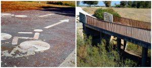 Imagen 28.- Diferentes tipos de accesos y senderos del parque. Fuente: José Manuel Algeciras Muñoz.