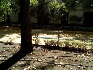 Imag 24: Gomas negras de goteo. Fuente: propia