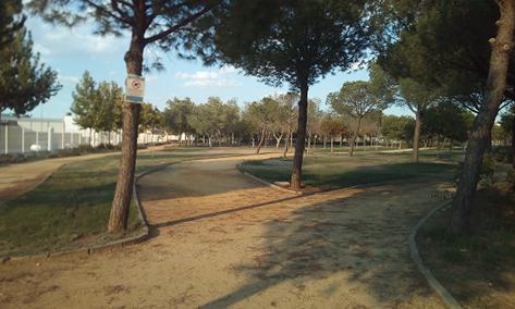 Imagen 22. Senderos de albero del parque. Fuente: Propia.