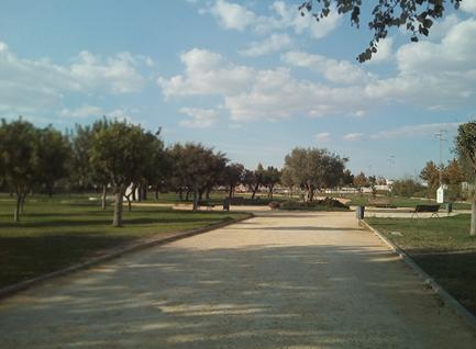 Imagen 23. Senderos de albero del parque. Fuente: Propia.