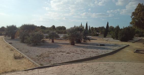 Imagen 12. Imagen de uno de los jardines de palmeras con superficie de graba blanca. Fuente: Propia.