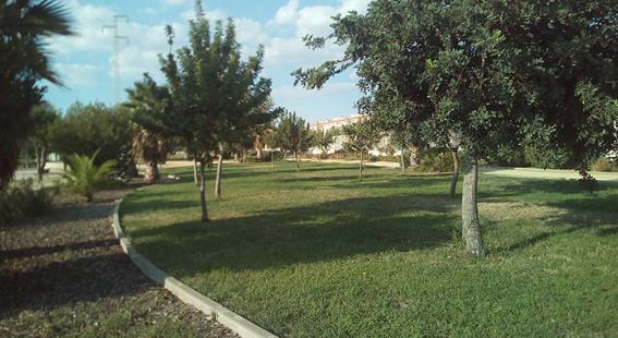 Imagen 13. Imagen de uno de los jardines de césped. Fuente: Propia.