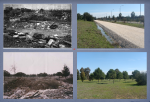 """La fuente de recursos que nos ofrecen las llanuras de inundación y la vegetación que sustentan las aguas de las crecidas de los arroyos Ranillas y Tamarguillo ha sido una de las razones principales por la que numerosos asentamientos humanos, desde épocas de la prehistoria, han venido estableciéndose en este territorio, aunque dichas crecidas de estos arroyos han provocado grandes problemas como la inundación de 1961 y por la cual tuvo lugar el encauzamiento del arroyo Arenillas al rio Guadaira. En dicha zona que conforma hoy el Parque del Tamarguillo perteneció hasta principios de la década de los setenta a la """"Hacienda Buena Esperanza"""" y que en sus orígenes se trataba de una dehesa de olivos y encinas, con toros bravos propiedad de la familia Marañón (precursores de la creación de la barriada de Alcosa)  aunque poco a poco se fuera adaptando a cultivos de secano.  En la década de los 80 dicha zona poseía zonas recreativas de una antigua base militar americana que fueron usadas por los vecinos de la zona. Con motivo de la Exposición Universal de 1992, se lleva a cabo en esta zona la construcción en pruebas del tren monorraíl. Tras el experimento, el Ayuntamiento abandona el espacio que se va degradando lentamente hasta convertirse en un vertedero incontrolado de residuos urbanos."""