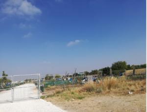 Imagen 8.- Segundo huerto ecológico junto a Aeropuerto de San Pablo. Fuente: Propia