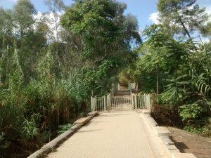 Fig 4. Puente de San Juan. Fuente: RPDL