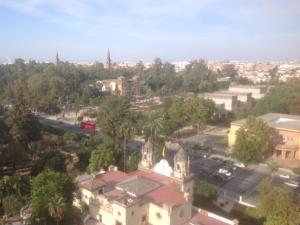 Imagen 13. Parque de María Luisa, separado del Jardín por la Palmera.