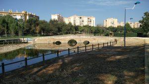 Imagen 3. Puente alcantarilla