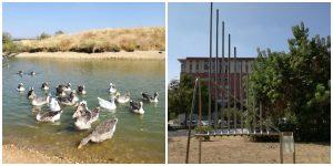 Imagen 26.- Diferentes áreas recreativas del parque. Fuente: Propia.