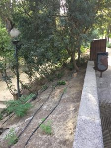 Imagen 29: Sistema de riego por goteo.