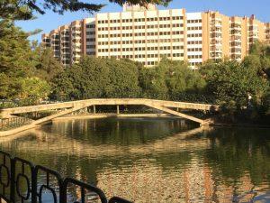 Imagen 10. Puente sobre el estanque. Fuente: propia.