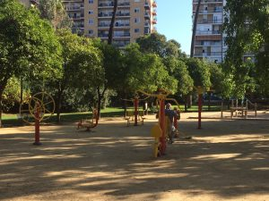 Imagen 6. Zona deportiva para personas mayores. Fuente: propia.