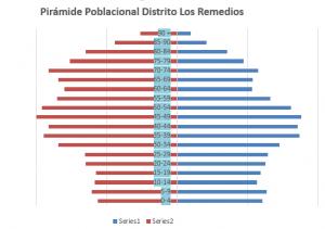 Gráfico 1. Pirámide poblacional Distrito Los Remedios. Fuente: propia.